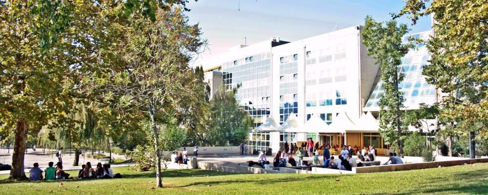 Oporto Global University